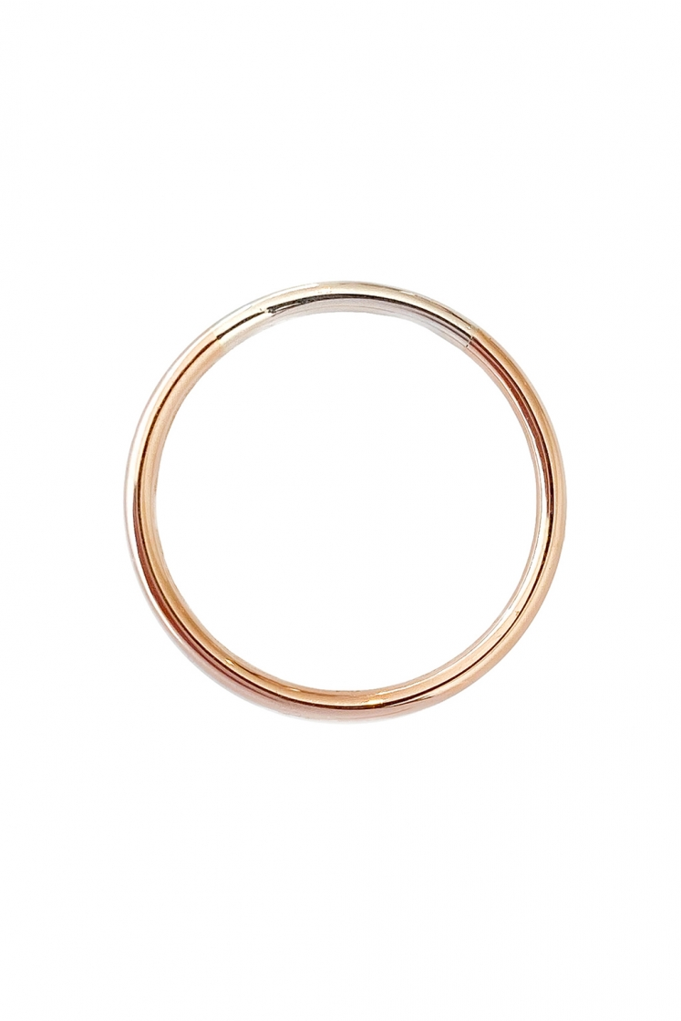 Rainbow 1'5 mm gold ring